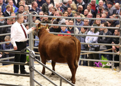 119 208 DE 03 603 78731 AngusAA Rebina r v. Iron Ore Heinz-Wilhelm Riekenberg Burgwedel