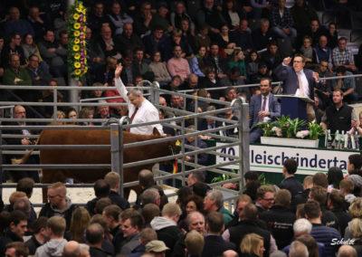 123 208 DE 03 603 78731 AngusAA Rebina r v. Iron Ore Heinz-Wilhelm Riekenberg Burgwedel