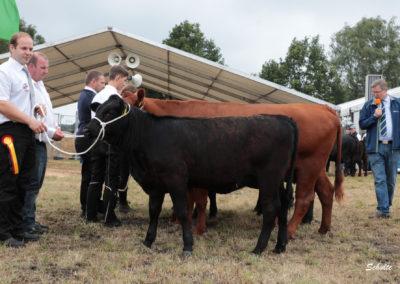 354 6 RS REA Weida r Cowboy DE 03 585 79522 Hillmann,Kai 27616 Frelsdorf,Grosse Feldstr. 5 CUX